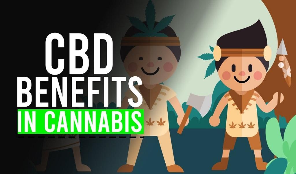 היתרונות הרפואיים של CBD בקנאביס