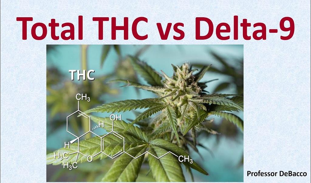 """סה""""כ THC מול THC דלתא 9, מה ההבדל"""